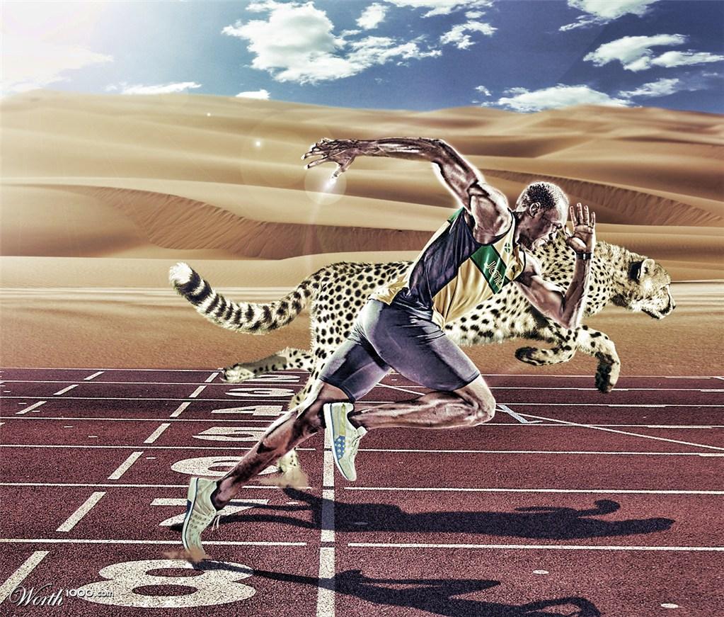 bolt vs cheetah