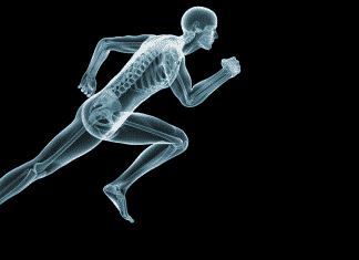 injury skeleton