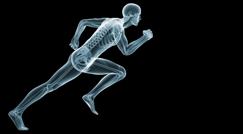 injury skeleton