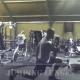 44 ασκήσεις γυμναστικής χρησιμοποιώντας μόνο το βάρος του σώματος σου