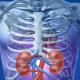 10 καθημερινές συνήθειες που βλάπτουν τα νεφρά σου