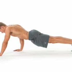 Seal-Walks-Opener-plank