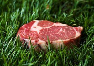 grass-fed-beef-αποκατάσταση