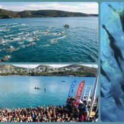 XTERRA Κολυμβητικός Διάπλους Βουλιαγμένης 2016