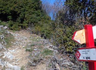 rapsani trail 2018