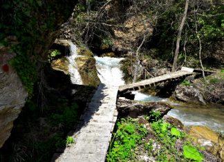 iti trail run