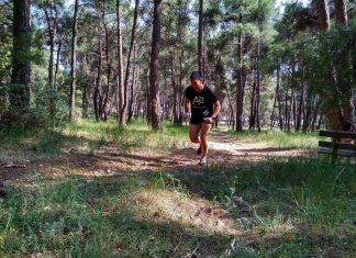 vertical run 2018